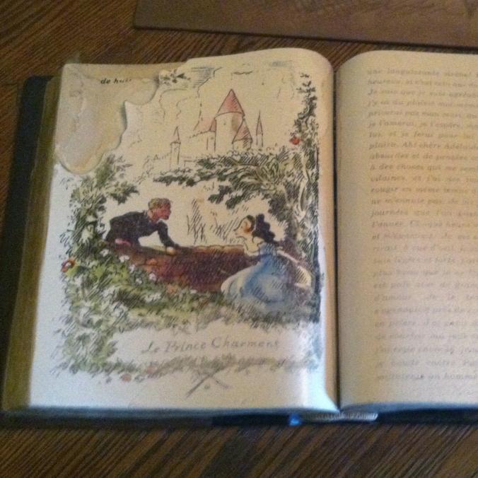 sheepbook